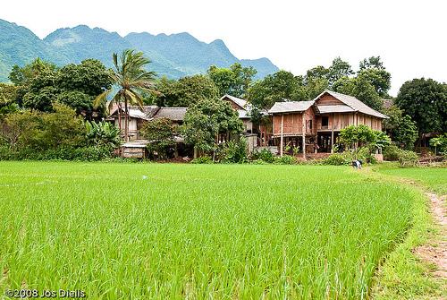 homestay-mai-chau-vietnam-2818152693.jpg