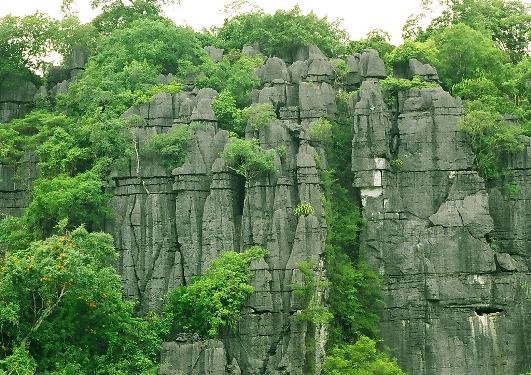 tầng karst cổ ở Phong Nha Kẻ Bàng