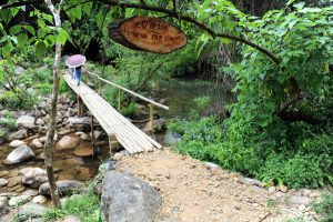 """Vườn Quốc gia Phong Nha – Kẻ Bàng vinh dự nhận """"Giải thưởng Di sản hữu hình xuất sắc nhất"""""""