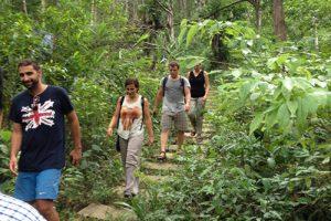 Vườn thực vật: Điểm đến kỳ thú