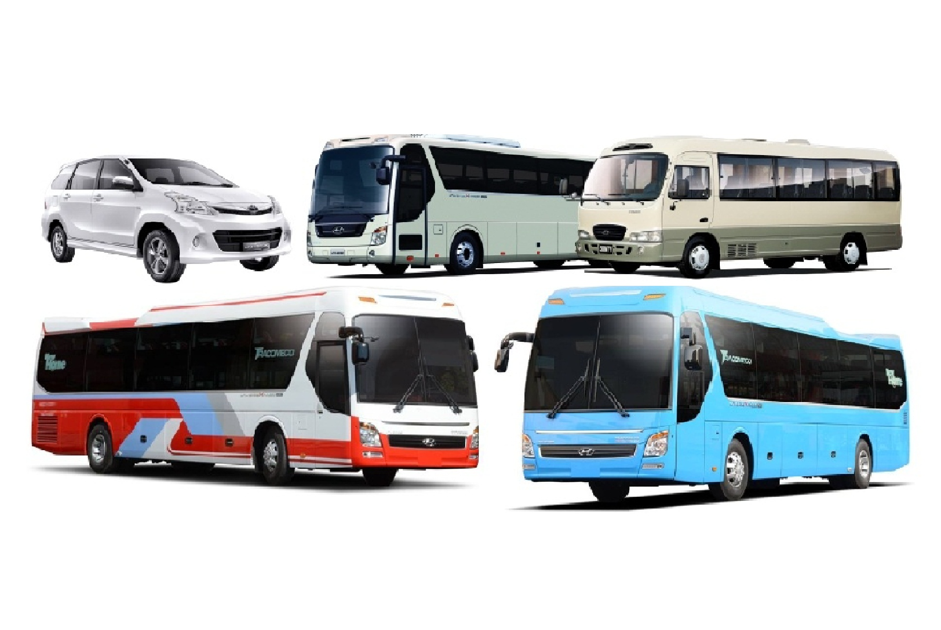 Cần so sánh ưu và nhược điểm khi thuê xe du lịch TPHCM để có quyết định đúng đắn
