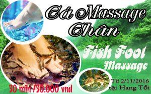 """Dịch vụ """"Cá massage chân"""" tại điểm du lịch Sông Chày – Hang Tối"""