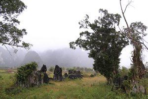 """Xây dựng tour du lịch Quảng Bình với phim trường """"Kong: Skull Island"""""""
