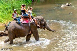 Chuyến bay Quốc tế Đồng Hới – Chiang Mai hoạt động trở lại