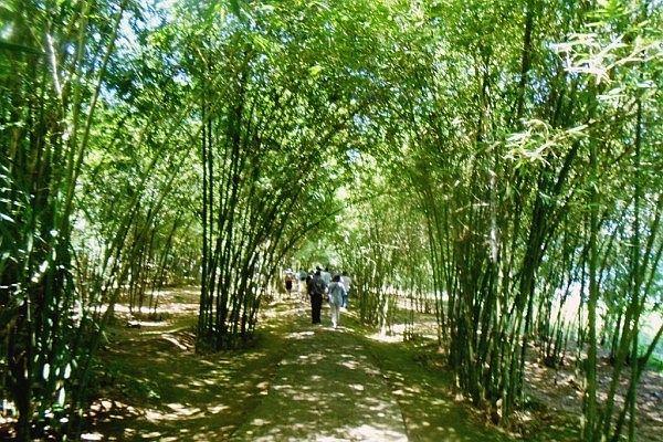 Địa đạo Vĩnh Mốc điểm du lịch trải nghiệm hấp dẫn của Du lịch Quảng Trị