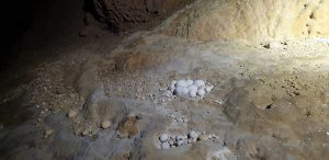 Bạn biết hang Nước Nằm ở đâu của Quảng Bình chưa?
