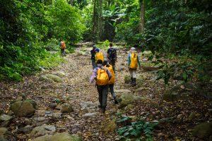 Những điều thú vị trong hành trình khám phá Phong Nha – Kẻ Bàng.